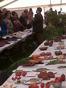 Flower Show 2012