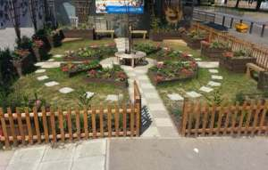 Jubilee School's new garden