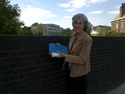 Cllr Jackie Meldrum with blue design for Knights Hill rail bridge