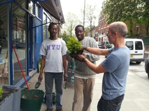 Members planting outside the L'Arche shop