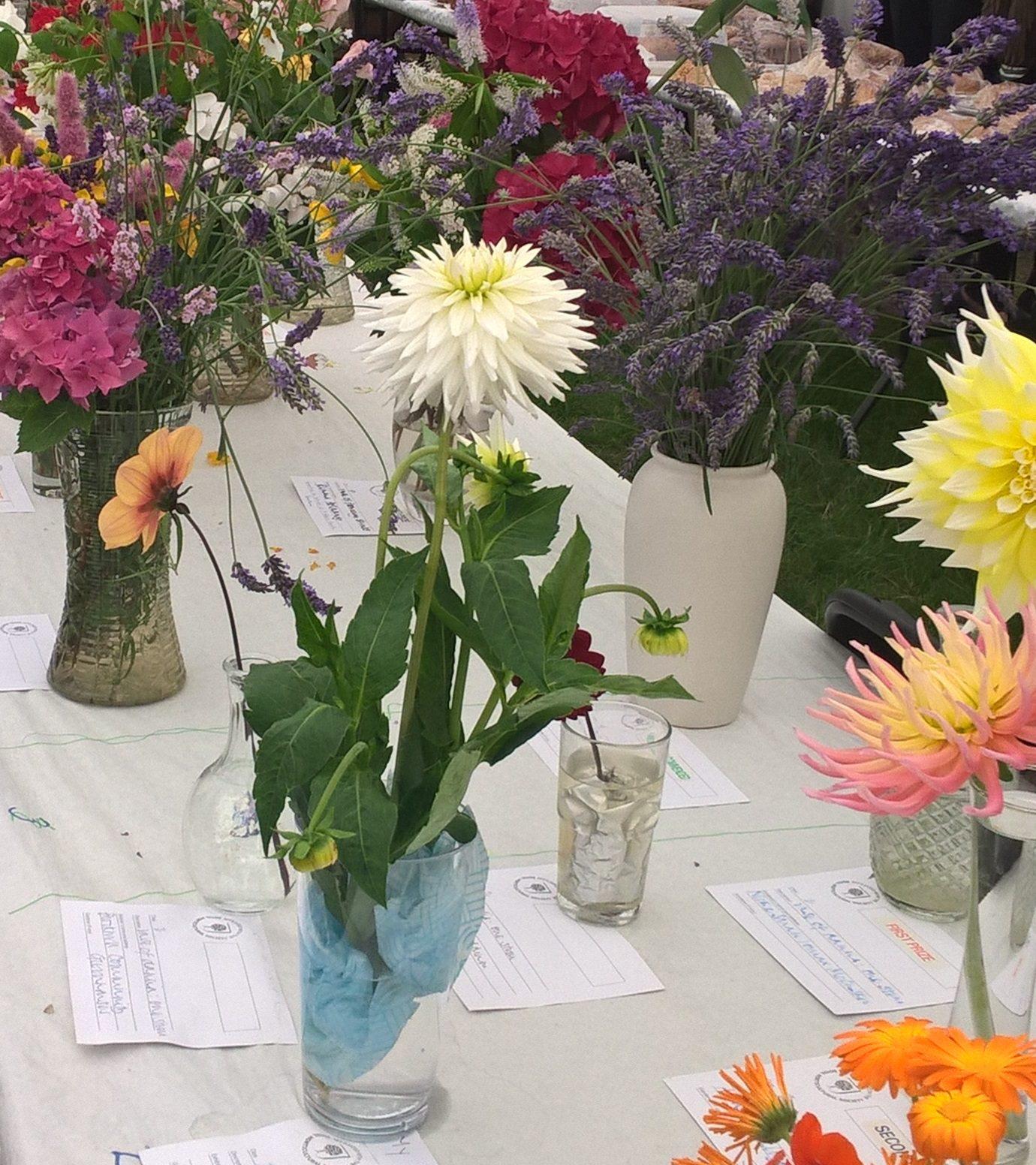 Flower show in St Luke's